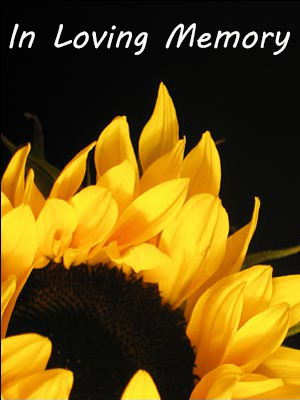 WEB Sunflower